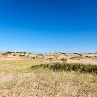 National Seashore Dunes