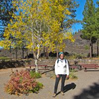 Kathy at the Lavalands Visitor Center
